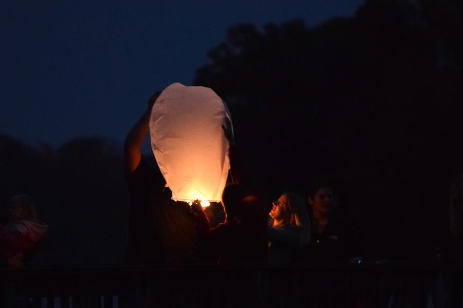 holding lantern