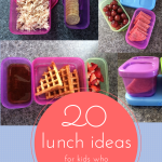 20 Lunch ideas for kids who don't like sandwiches